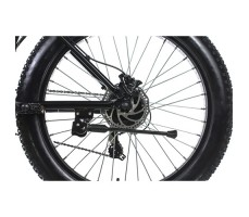 фото Электровелосипед SmartWheels Alaska Black