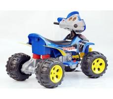 Фото электроквадроцикла Joy Automatic 22 Quad Blue вид сзади