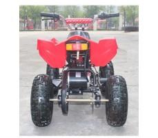 Фото электроквадроцикла Joy Automatic Electro Rider (500W) Red вид сзади