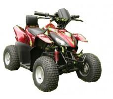 Электроквадроцикл Simbel Mini Q eco Red