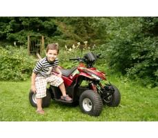 Фото электроквадроцикла Simbel Mini Q eco Red вид сбоку