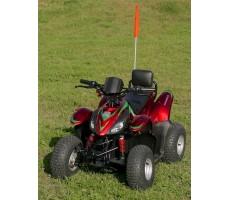 Фото электроквадроцикла Simbel Mini Q eco Red вид сверху