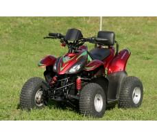 Фото электроквадроцикла Simbel Mini Q eco Red вид спереди