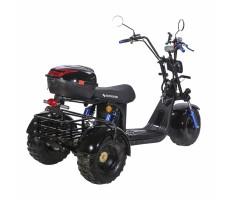 SKYBOARD TRIKE BR40-3000 PRO FAST OFF-ROAD сзади