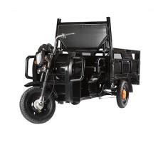 фото грузовой электрической тележки без тента Green City D3 спереди