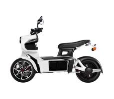 фото вид сбоку Электротрицикл xDevice Doohan iTank SK White