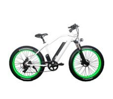 Электровелосипед El-sport bike TDE-08 500W White