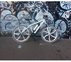 фото Электровелосипед California Electro - GT White