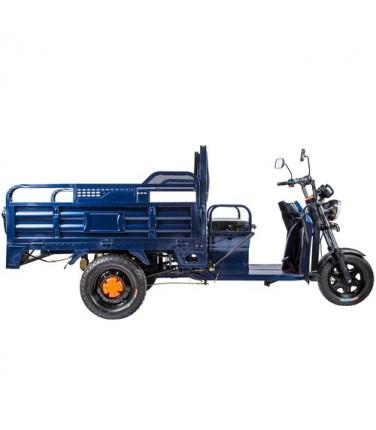 Грузовая электрическая тележка D2 Blue | Купить, цена, отзывы