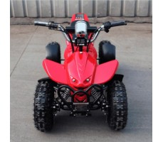Детский электроквадроцикл El-Sport Kid ATV 800W