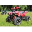 Электроквадроцикл MYTOY 1000D Red