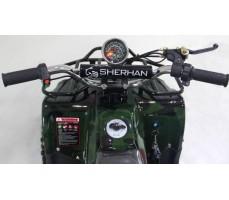 Фото электроквадроцикла SHERHAN 300 Green вид сверху