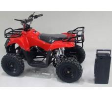 Фото съемного аккумулятора электроквадроцикла SHERHAN 300 Red