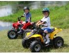 Как выбрать детский электроквадроцикл?
